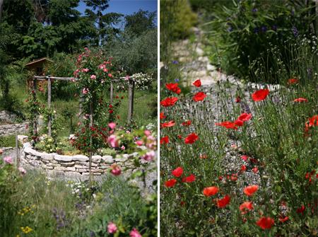 flowers_double.jpg